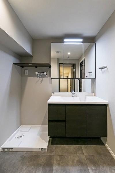 獨立洗臉台-室內洗衣機放置處-RealEststeJapan-住友不動產