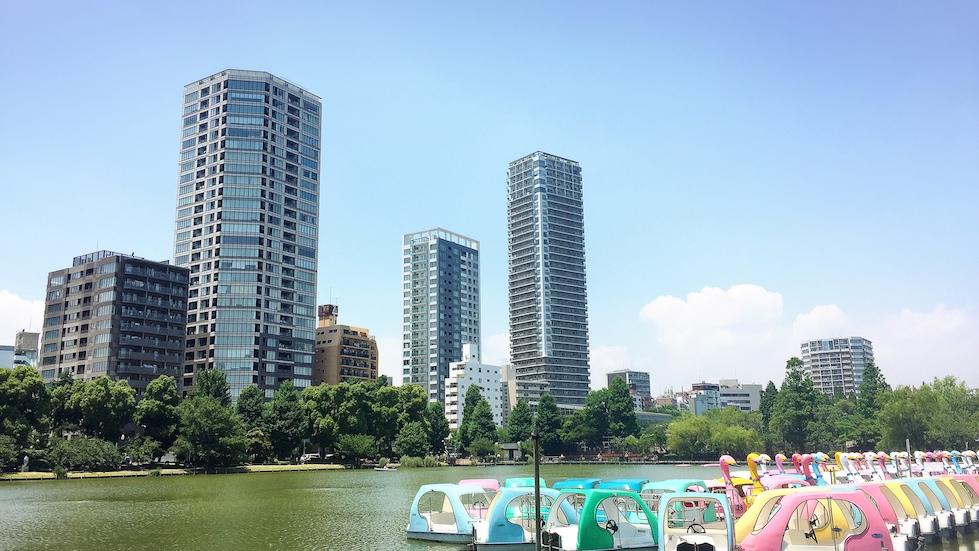 上野-不忍池-划船池