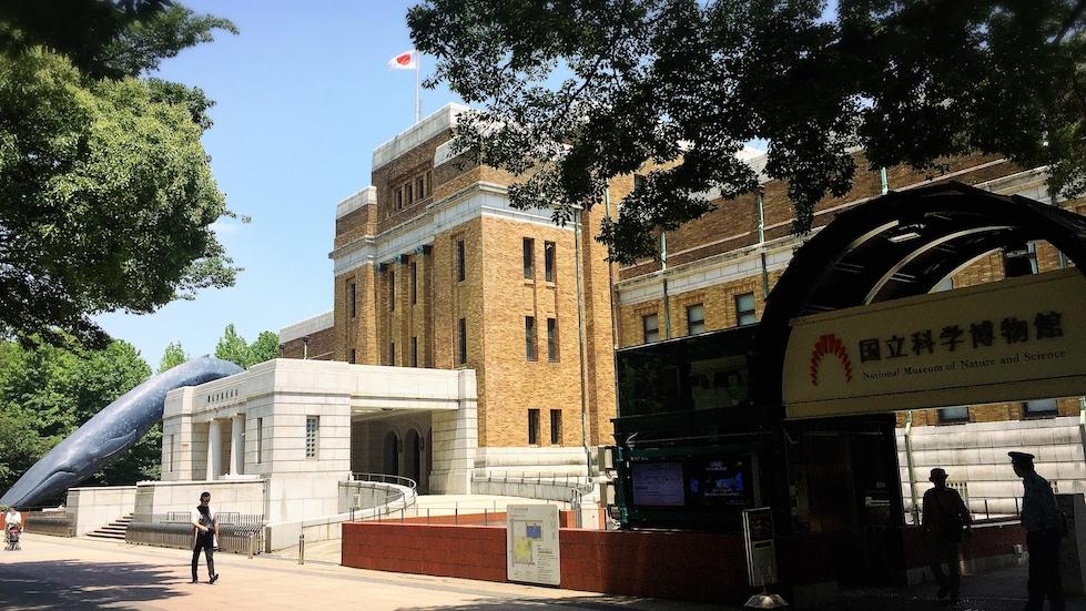 上野公園-國立科學博物館