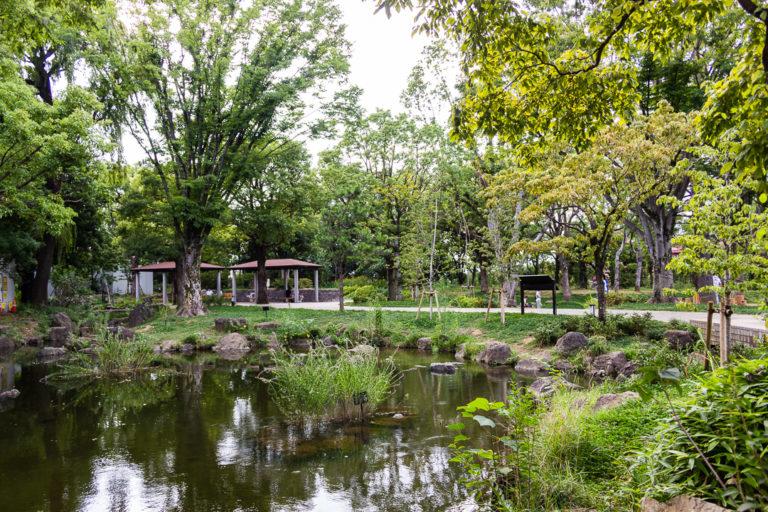 平和之森公園-中野