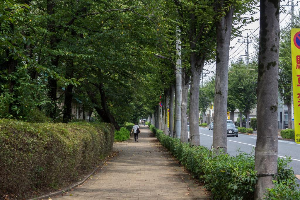 東小金井-公園街道