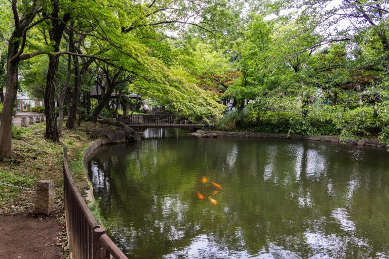 高圓寺-馬橋公園