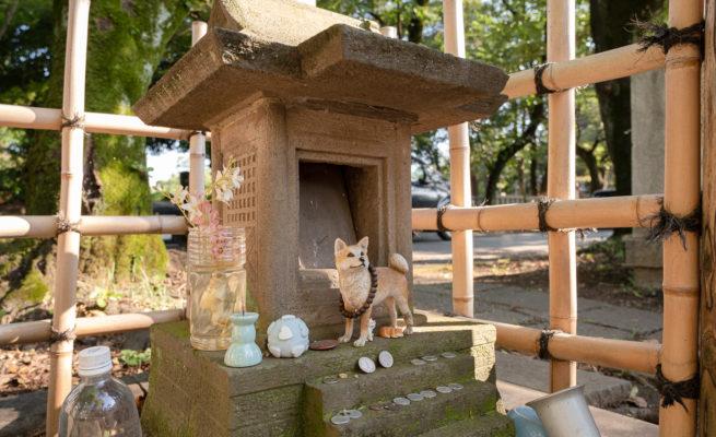 青山靈園-忠犬八公墓