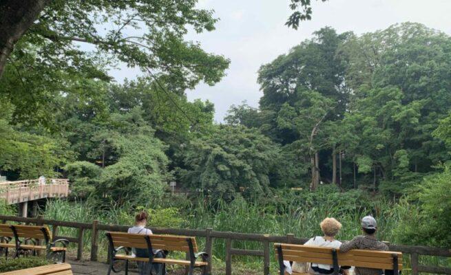 吉祥寺井之頭公園, GaijinPot Housing Service租房服務Cindy攝